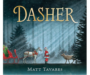 Dasher Matt Tavares
