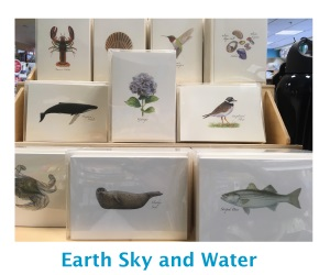 Earth Sky Water Cards