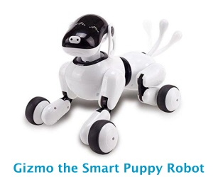 Gizmo the Smart Puppy Robot