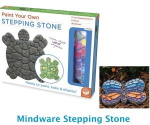 Mindware Stepping Stone