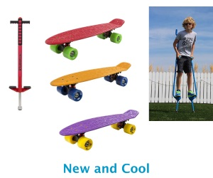 Flybar pogo stick skateboard stilts